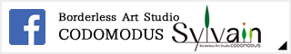 Borderless Art Studio CODOMODUS Facebook