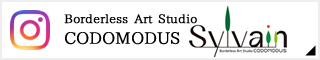Borderless Art Studio CODOMODUS Instagram